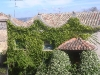 cammino-santiago-2006-15