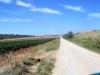 cammino-santiago-2006-16